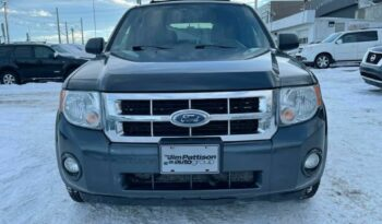 2008 Ford Escape LIMITED full